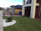 L26 – Frontyard Palmetto Turf