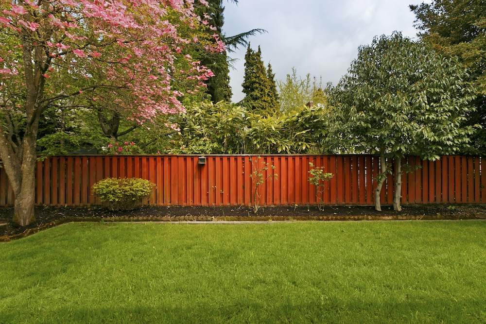 Backyard landscaping tips and tricks