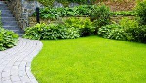 How to create a minimalist garden
