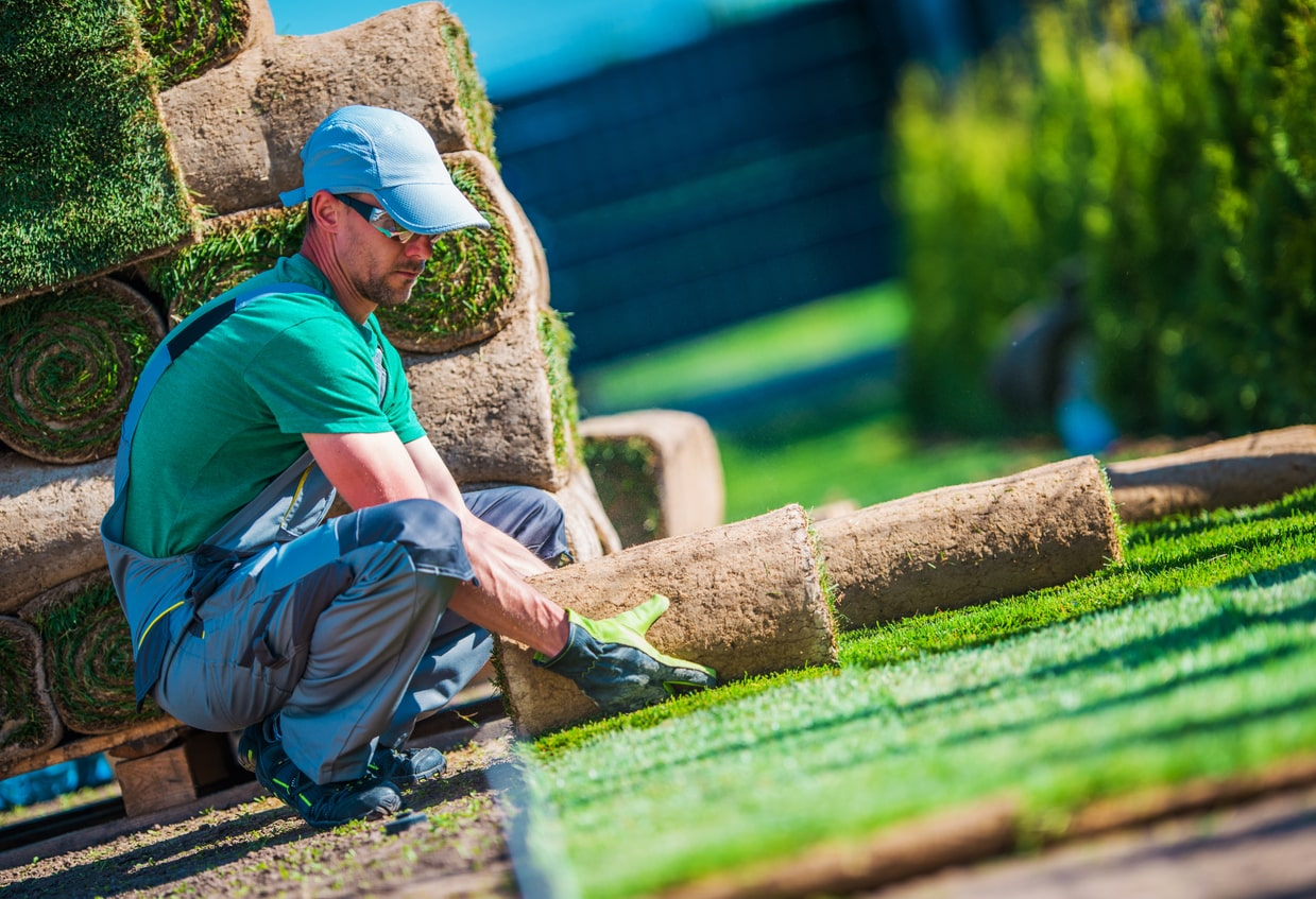 Tips for choosing the right landscaper