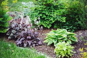 landscaping tips for summer