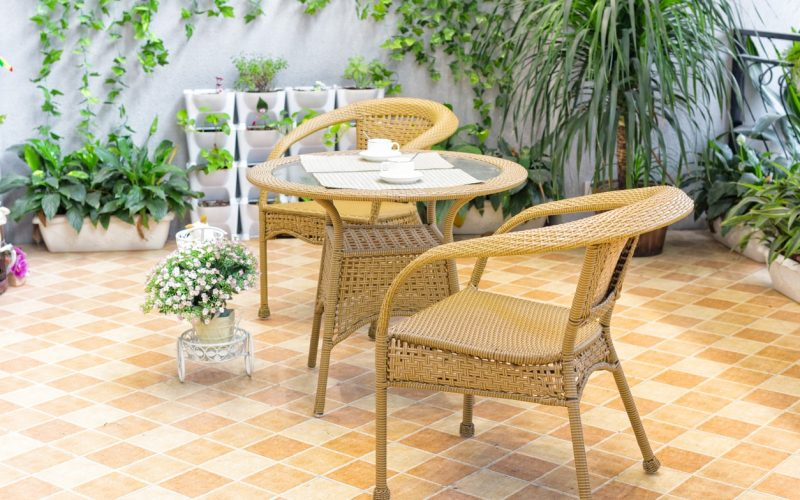 Best plants for small courtyards or gardens